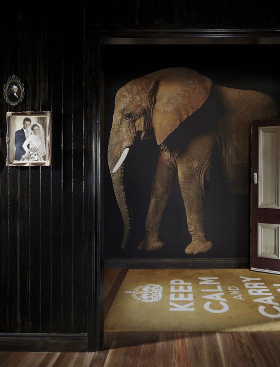 Entrée de restaurant avec un papier-peint panoramique Elephant