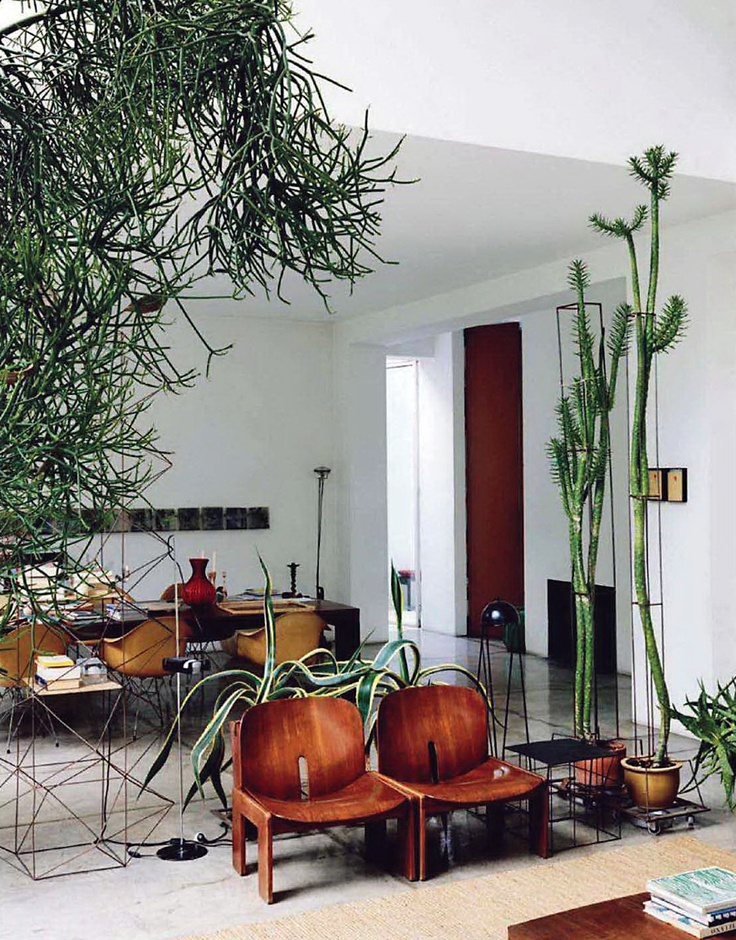Des plantes d 39 int rieur autrement - Plants can improve ambience home ...