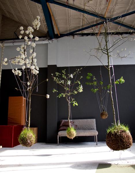 String Gardens Australie || kokedama