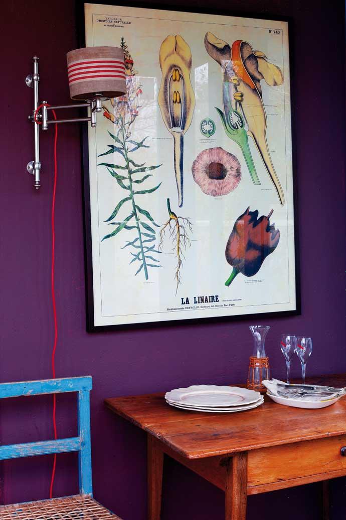 Des murs de couleurs vives sous le soleil || Salome Gunter - Franschoek South Africa