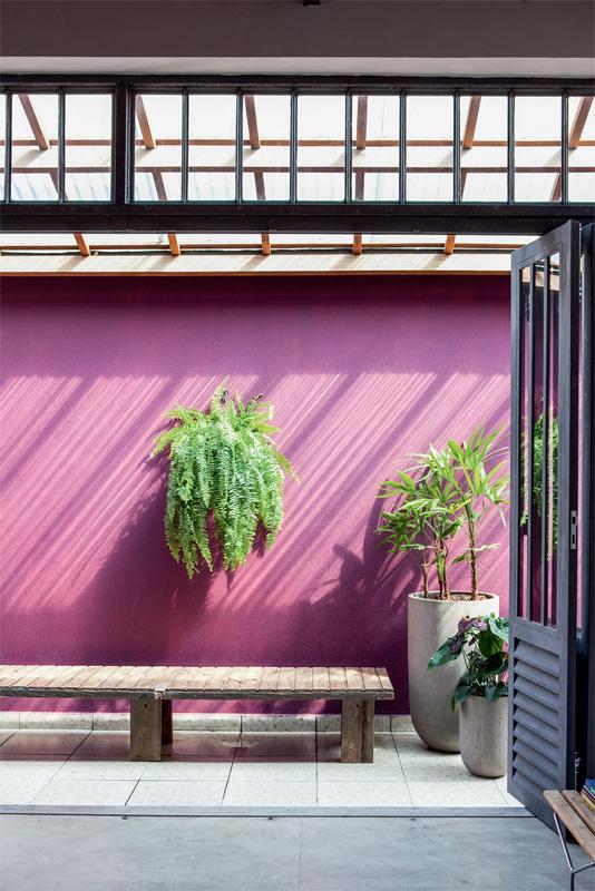 Des murs de couleurs vives sous le soleil || Casa galpao - Brésil