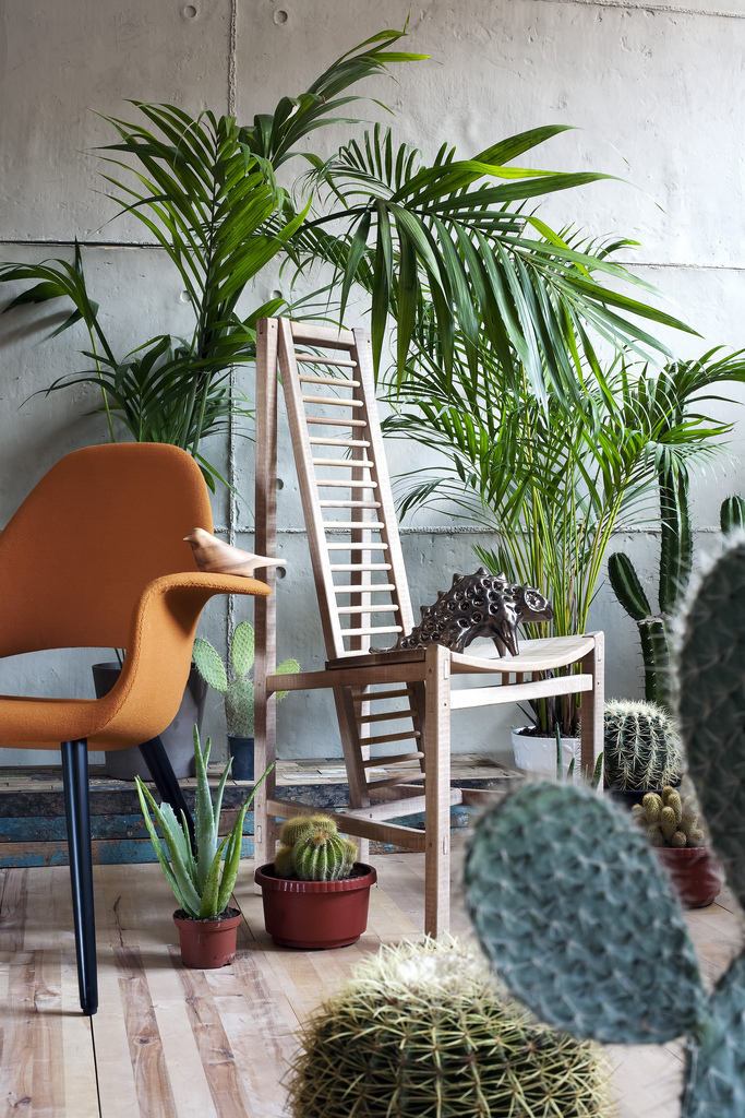 Salon inspiration Jardin