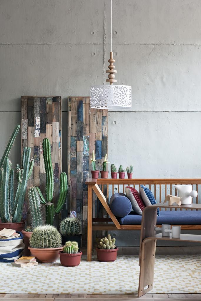 Donner des airs de jardin tropical à son intérieur | Cactus love - Gozde Eker portefolio
