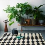 Donner des airs de jardin tropical à son intérieur