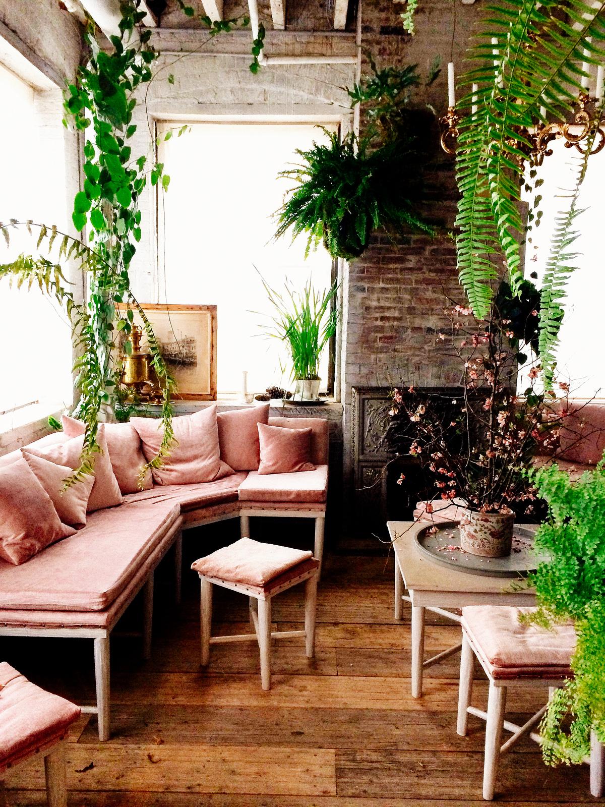 Donner des airs de jardin tropical à son intérieur | Bellocq, tea atelier Greenpoints