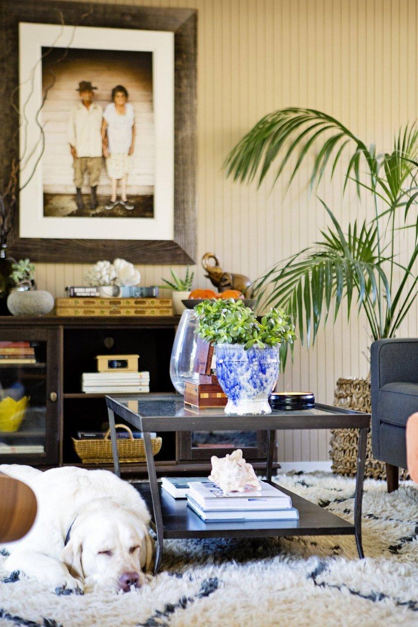 Donner des airs de jardin tropical à son intérieur   Hope and Petes bohemian modern abode house