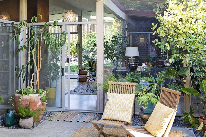 Idee Deco Petit Jardin donner des airs de jardin tropical à son intérieur