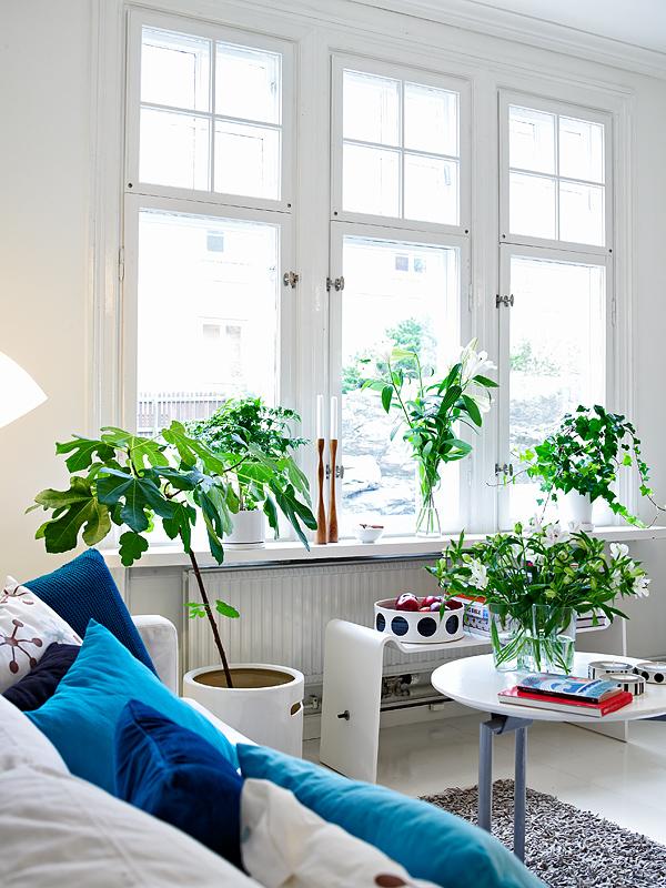 Donner des airs de jardin tropical à son intérieur | Donner des airs de jardin tropical à son intérieur | Intérieur scandinave avec des plantes