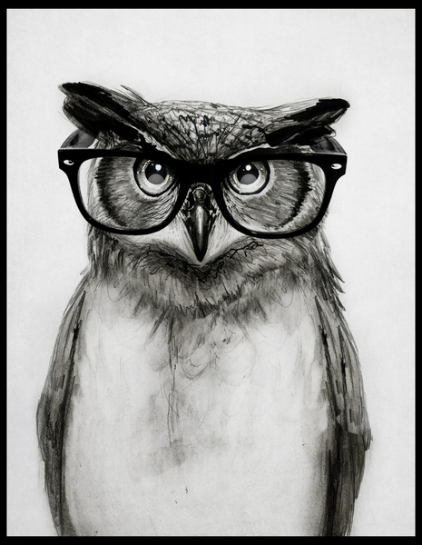 Mr Owl dhg sur society6
