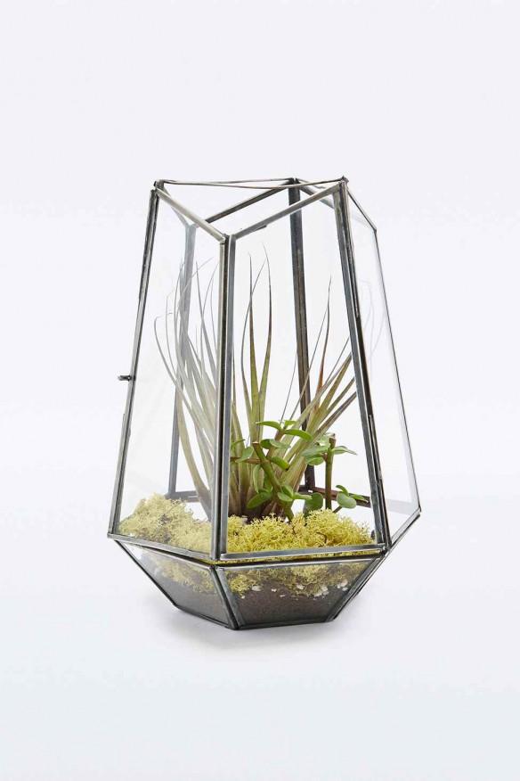 Urban Outfitters - Urban grow terrarium