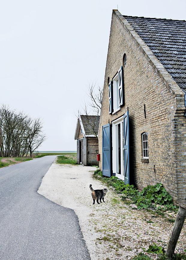 Modernité rustique pour la ferme d'Ina & Matt, rénovée aux Pays Bas, dans un style moderne rustique