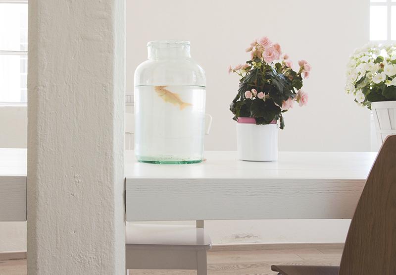 Le blanc en déco comme boîte à lumière sur Turbulences Déco // Design intérieur : Archiplan studio - Projet Casa Errepi, maison en Lombardie