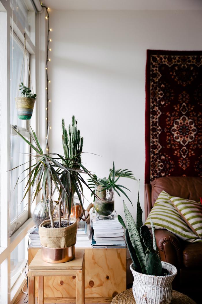 La maison de Caleb etd Tess Guinery à Sydney - Une déco boho bohème