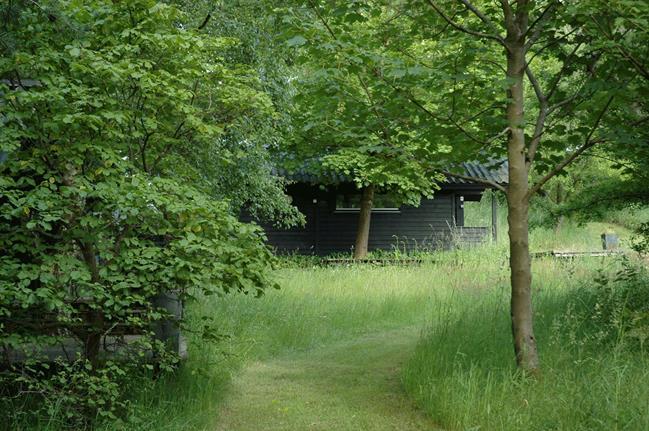 Une maison de campagne en blanc et noir sur fond de verdure // Une allée de gazon tondu au milieu du gazon non tondu