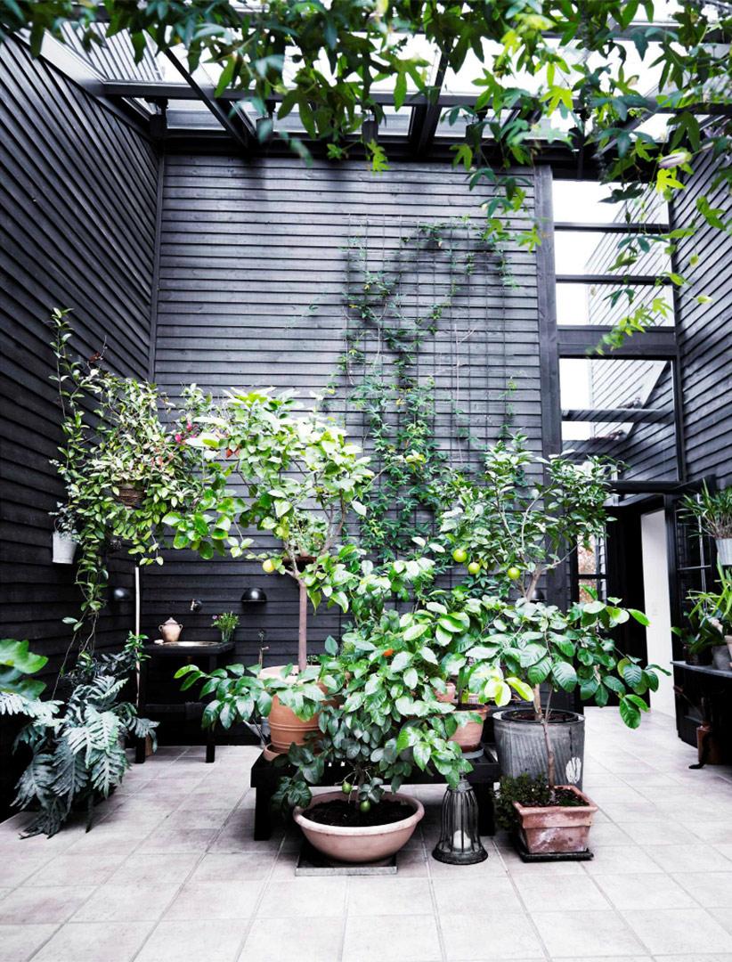 Une maison de campagne en blanc et noir sur fond de verdure // Une serre avec sa fenêtre de toit et son bardage noir