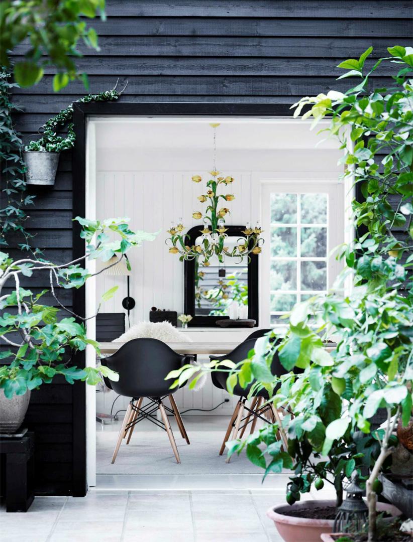 Une maison de campagne en blanc et noir sur fond de verdure // Contraste de l'intérieur blanc avec l'extérieur couvert en bardage nois