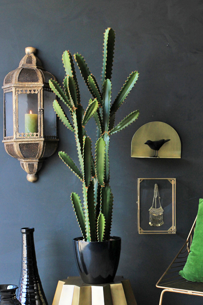 Abigail Ahern design - Great Sandy faux cactus for Rockett St Georges