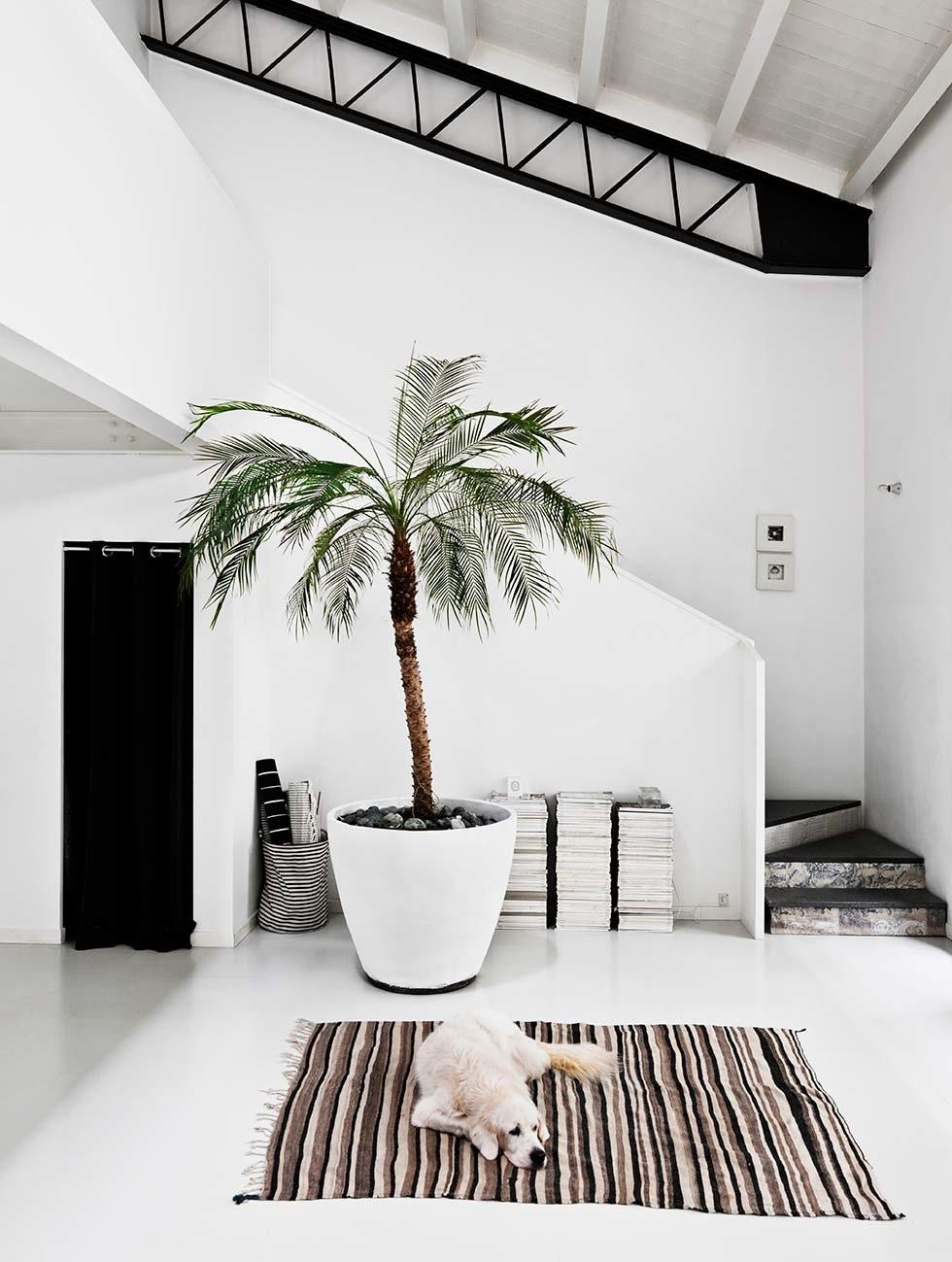 inspiration d co archives page 3 sur 15 turbulences d co. Black Bedroom Furniture Sets. Home Design Ideas