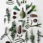 Une décoration de Noël inspirée de la nature