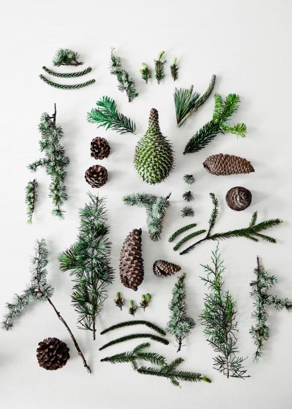 Décoration de Noël inspirée de la nature || Stylist Fleur McHarg pour Vogue living Australie