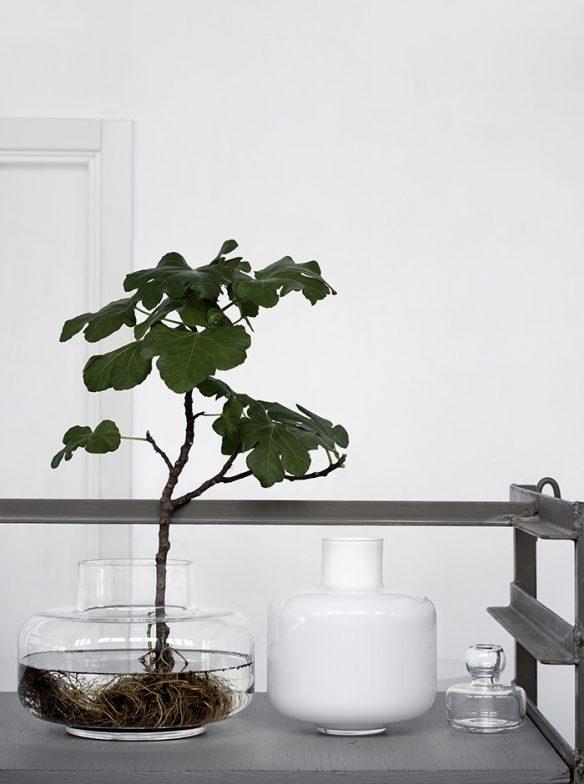 Lotta Agaton interiors - Vases et plantes