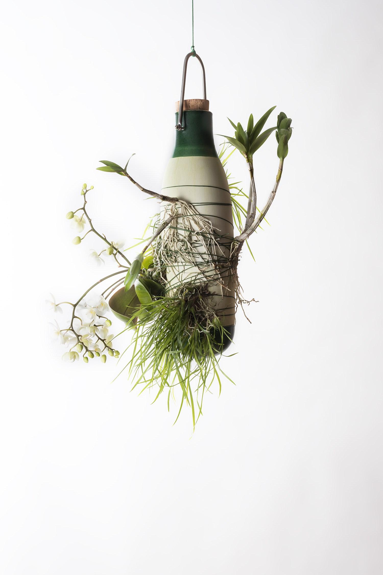 Pot De Plante Pas Cher plantes et design : 5 idées à expérimenter chez soi