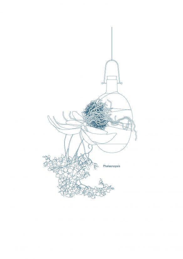 Epiphytes Print - Design Dossofiorito