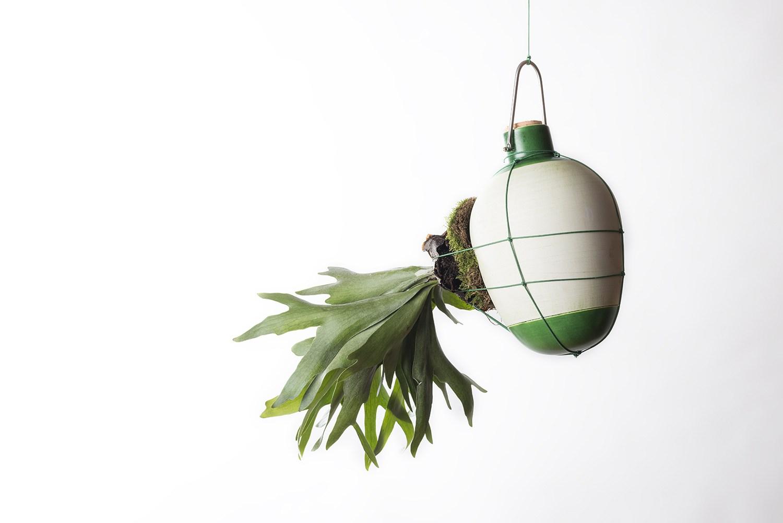 Epiphytes - Design Dossofiorito