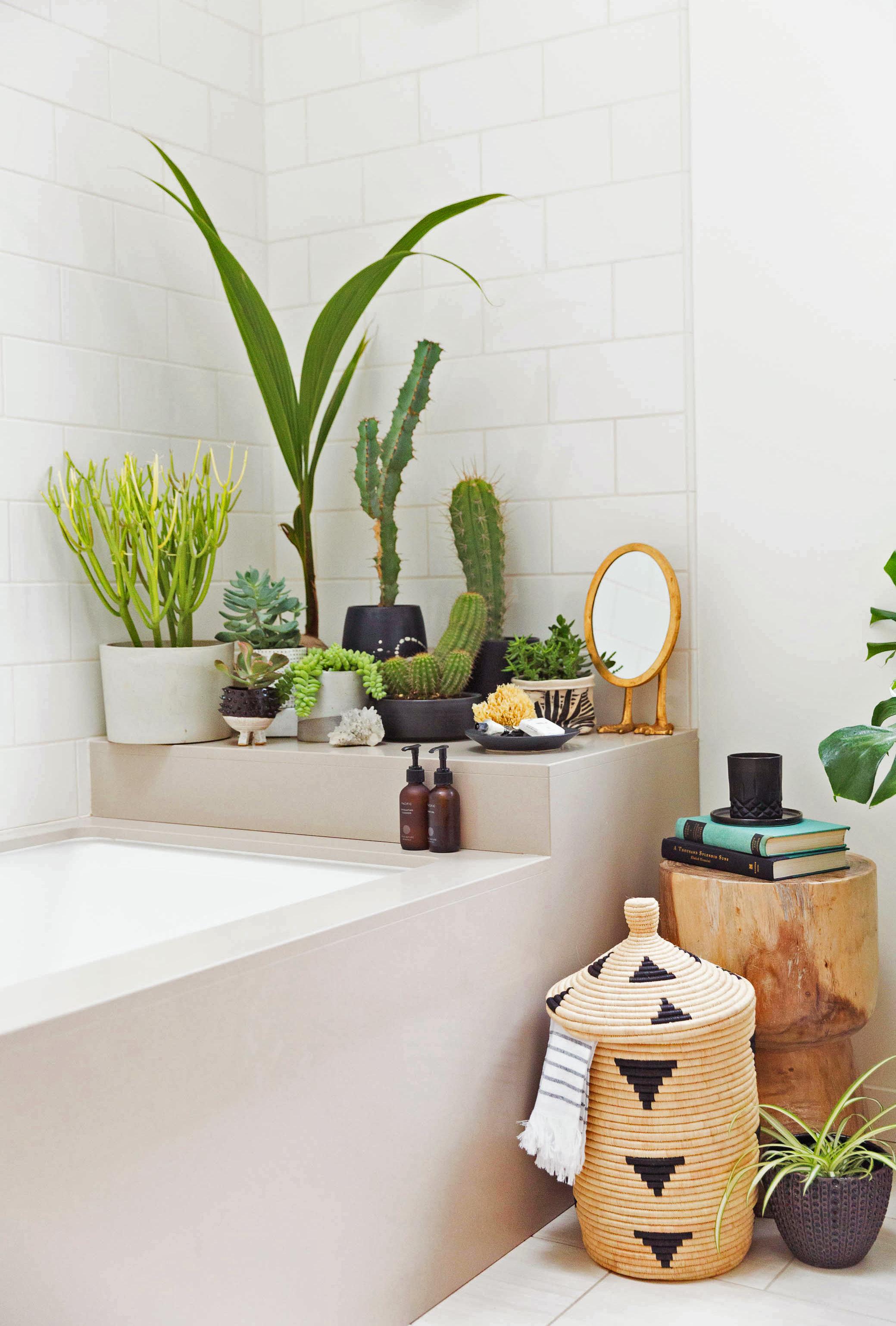 Le fil vert en décoration d'intérieur || Un jardin d'intérieur dans sa salle de bain par honestlywtf