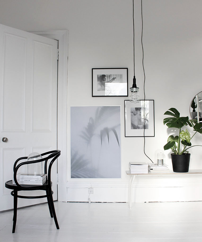 Affiches design botaniques par Kristina Dam studio, Cactus - Styling : Ollie and sebs