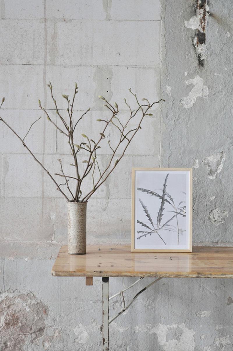 Affiches design botaniques - Studio Joop par Anniek-Beije Plant Series