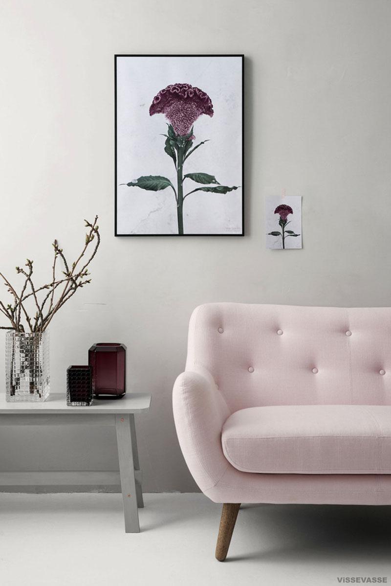 Affiches botaniques design par Vee Speers, Botanica celosia cristata styled