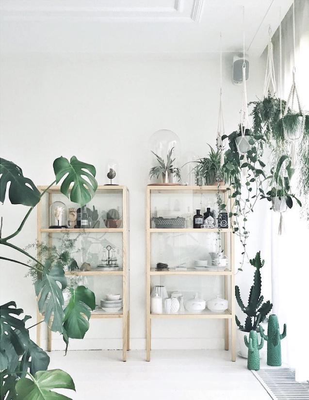 Déco blanche et plantes vertes - L'intérieur de Maaike Koster, My deer à Harlem