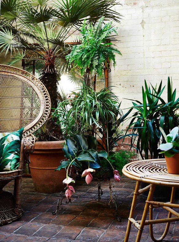 Botanical style par Selina Lake - Photo : Rachel Whiting