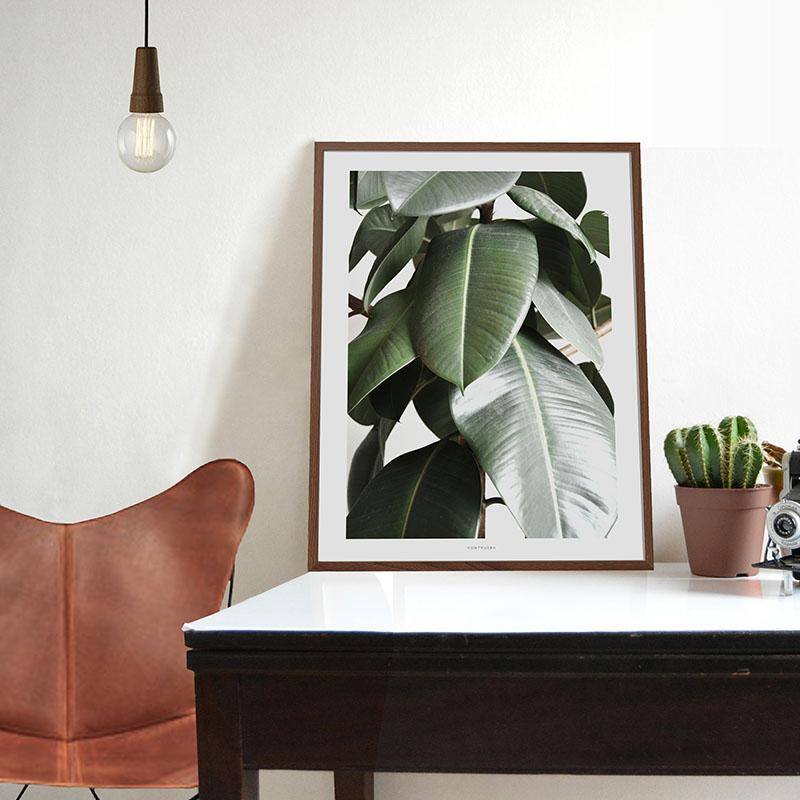Affiches botaniques design par Vontrueba - Supra veggie no1