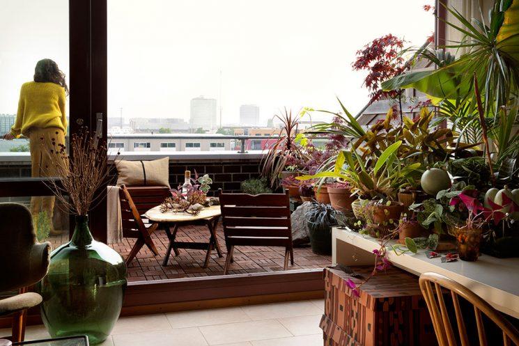 Le petit appartement verdoyant de Siriane à Amsterdam