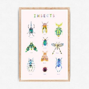 juliejup_poster-insects