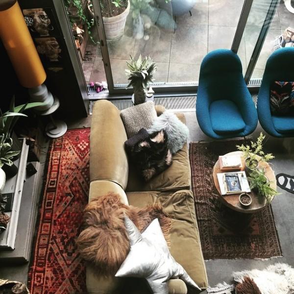 Comment assortir son décor à un canapé moutarde ? | L'intérieur d'Abigail Ahern