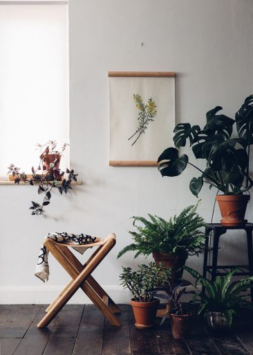 Aller savoir pourquoi on aime autant les plantes d'intérieur || via thefuturekept.com