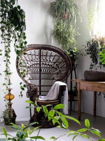 Un ancien entrepôt à Delft, de palettes et plantes vertes sur fond blanc immaculé