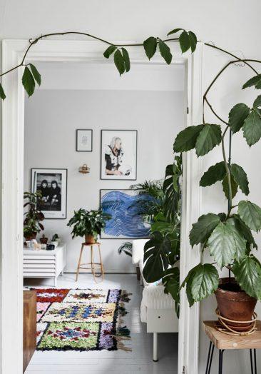 Green home book par Suzanna Vento en collaboration avec les photographes Riikka Kantinkoski et Pinja Forsman