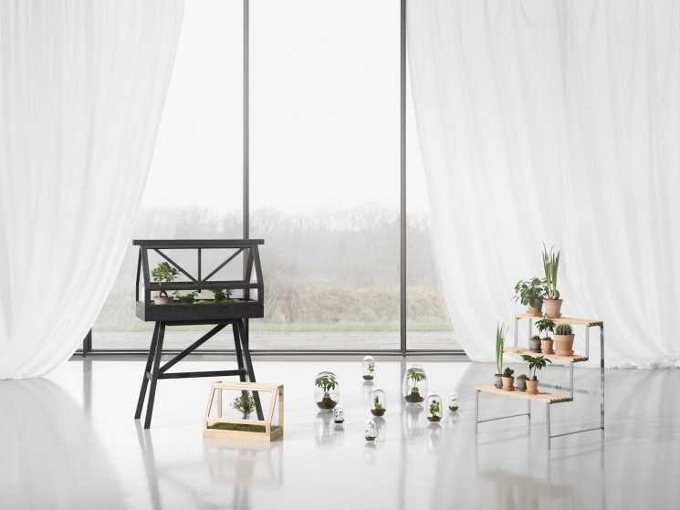Serre miniature Greenhouse éditée par House Stockholm - Design Atelier 2+