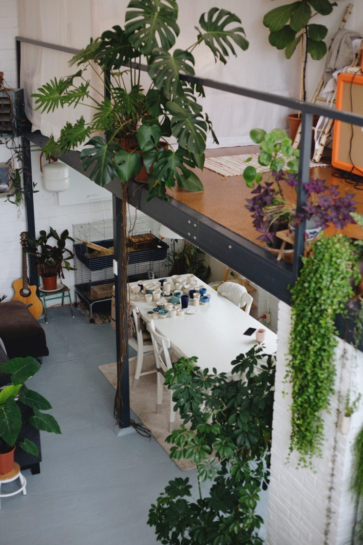 L'invasion des plantes vertes | Loft atelier de Rena du studio Hear Hear