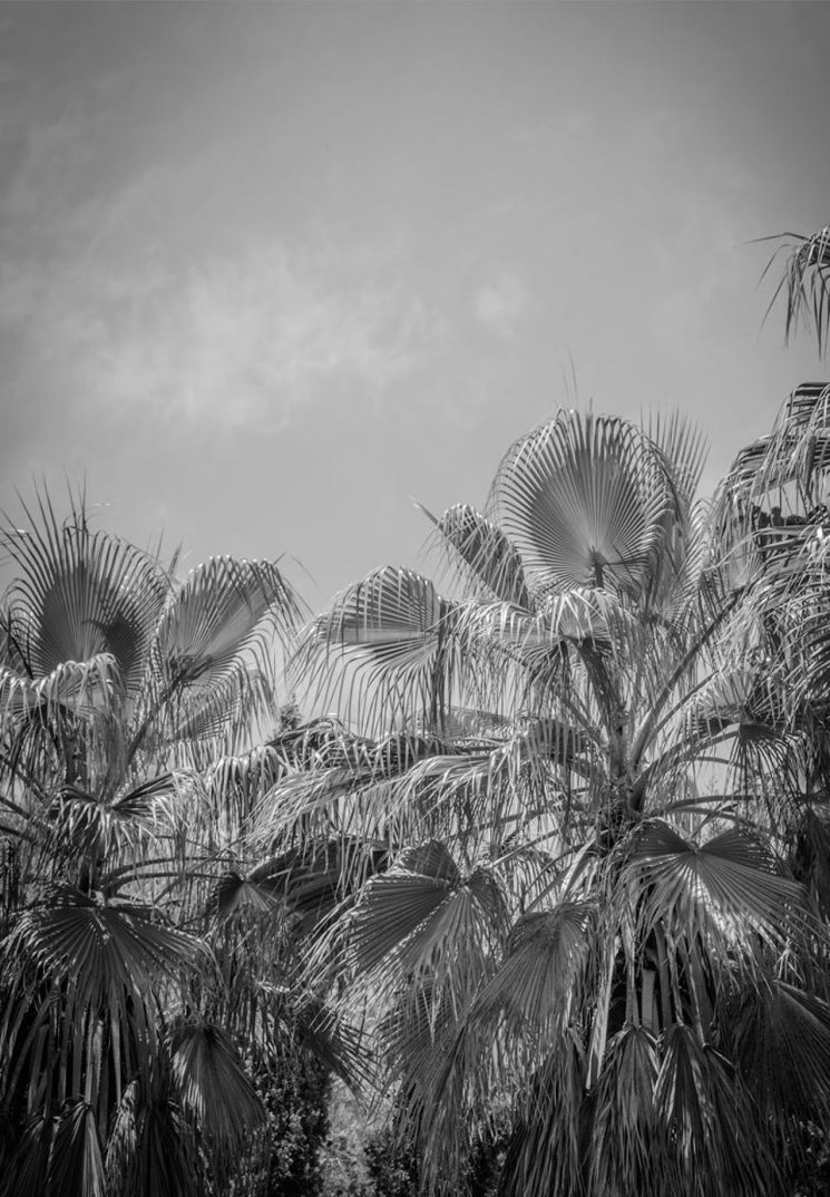 Une terrasse en méditerranée // Maison de Caroline Legrand à Ibiza