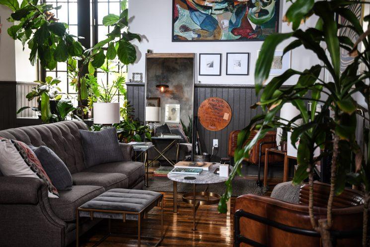 L'invasion des plantes vertes en décoration | Un loft à Baltimore