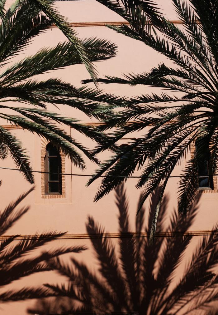 Mur rosé à Marrakech