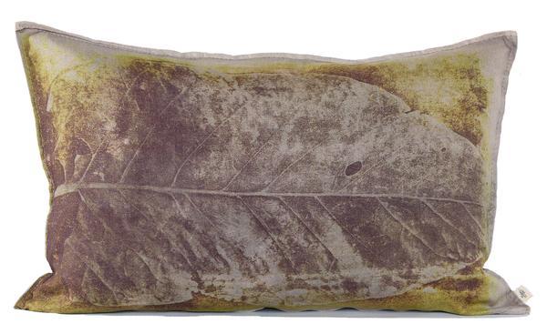 Evolution, marque sud africaine - Coussin Geel blaar