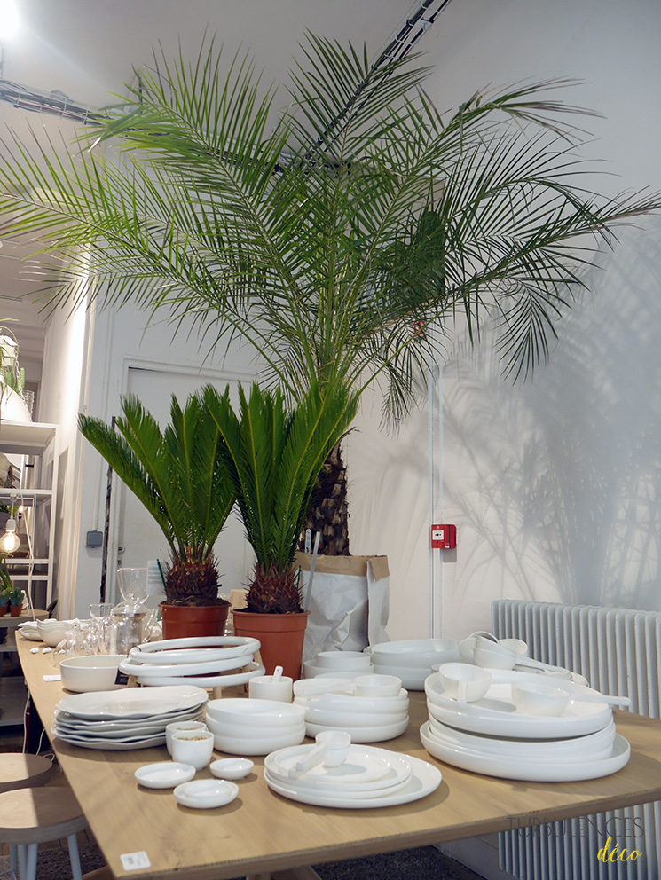 Madeleine et Gustave, une boutique qui donne envie de passer au vert - Paris 10