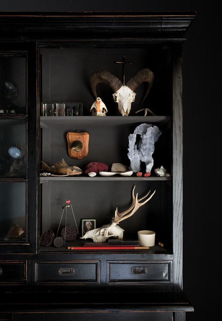 La déco au masculin - Le noir + esprit dandy + cabinet de curiosité