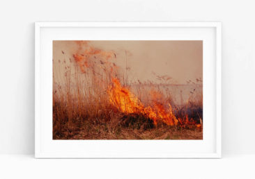 Tirage original Ultrashop - Burning de Li Hui